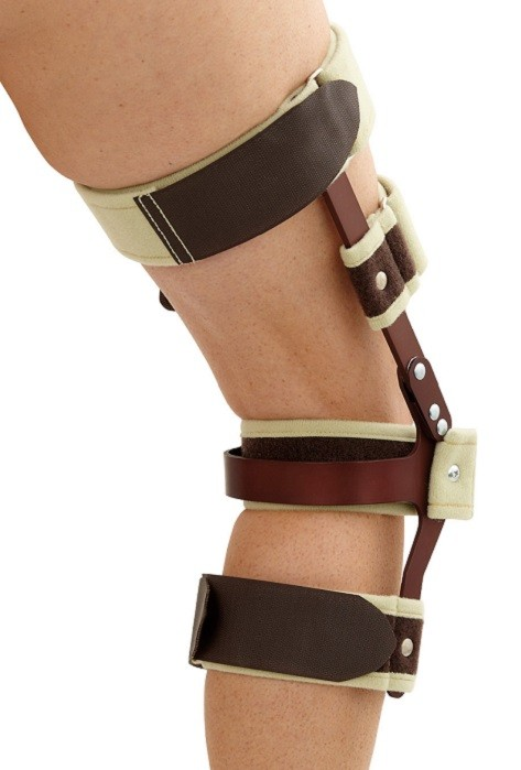 Hinged Swedish Knee Cage back view