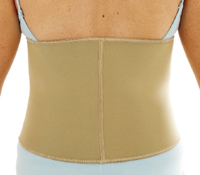 Waist Support back view