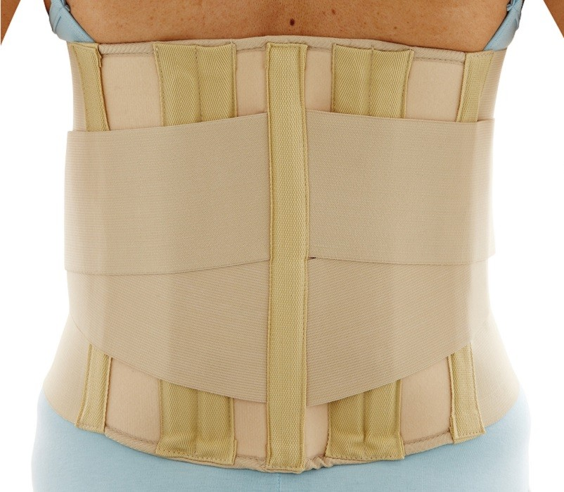 Deluxe Lumbar Sacro Support back view
